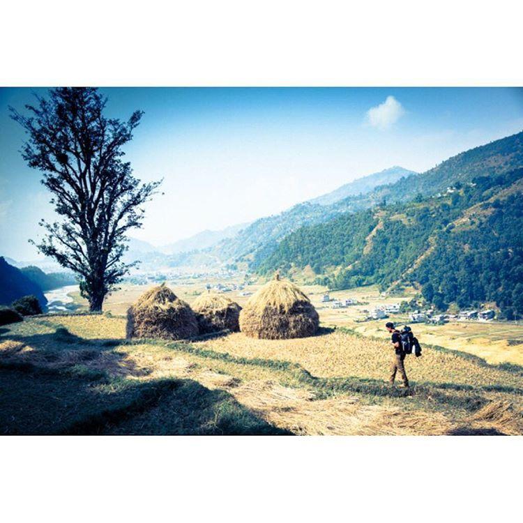 #himalayanhalfwayhouse • Photos et vidéos Instagram