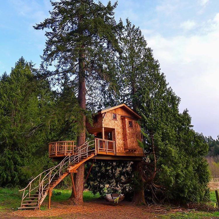 The New Treehouseresortandspa By Nelsontreehouse