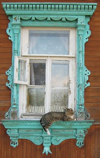 Window with blue gingerbread trim and a happy cat lazing on the sill.....gorgeous!