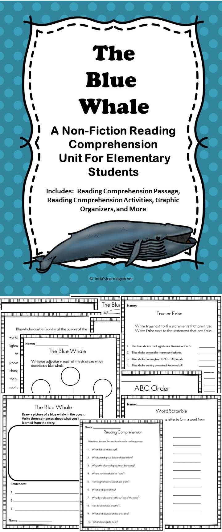 The Blue Whale | Education | Pinterest | Reading comprehension ...