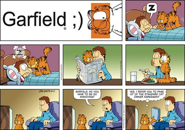 Comic Monday Dog Cat Day Large