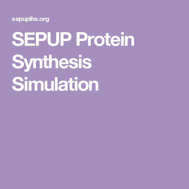Sepup Protein Synthesis Simulation Pltw Pinterest Teacher