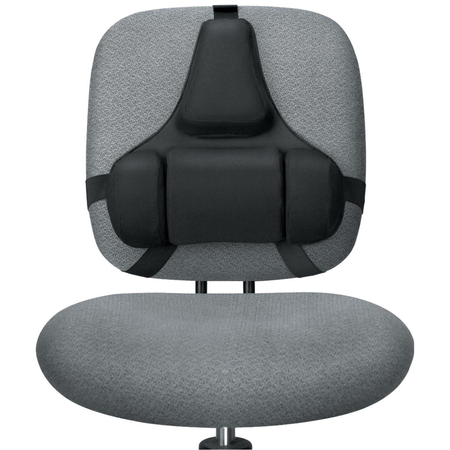 ergonomic chair back support cushion how to repair patio chairs fellowes professional series