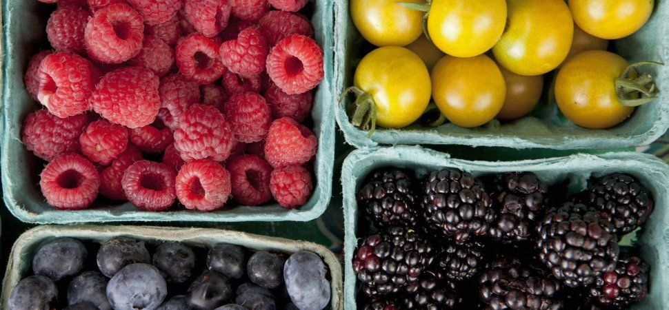 7 Daily Habits to Keep Your Brain Healthy, According to a Neuroscientist | Healthy drinks ...