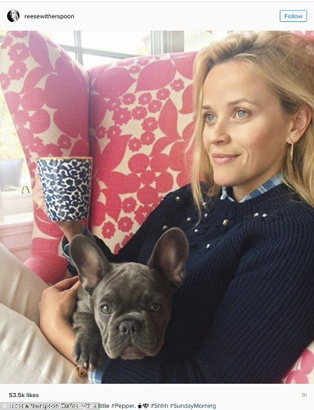 Reese Witherspoon S Daughter Ava 16 Has A Hair Raising Day