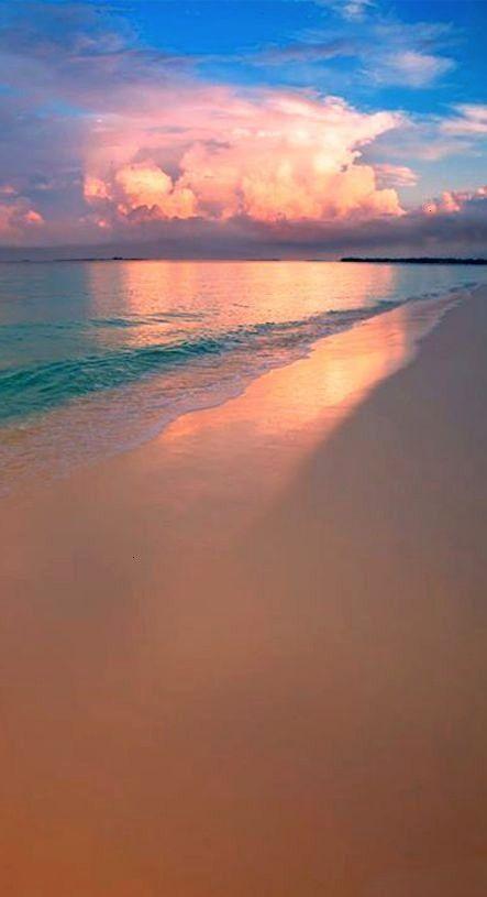 Best Photography Nature    Best Photography Nature Season Backdrops Summer Backdrops Beach Ba