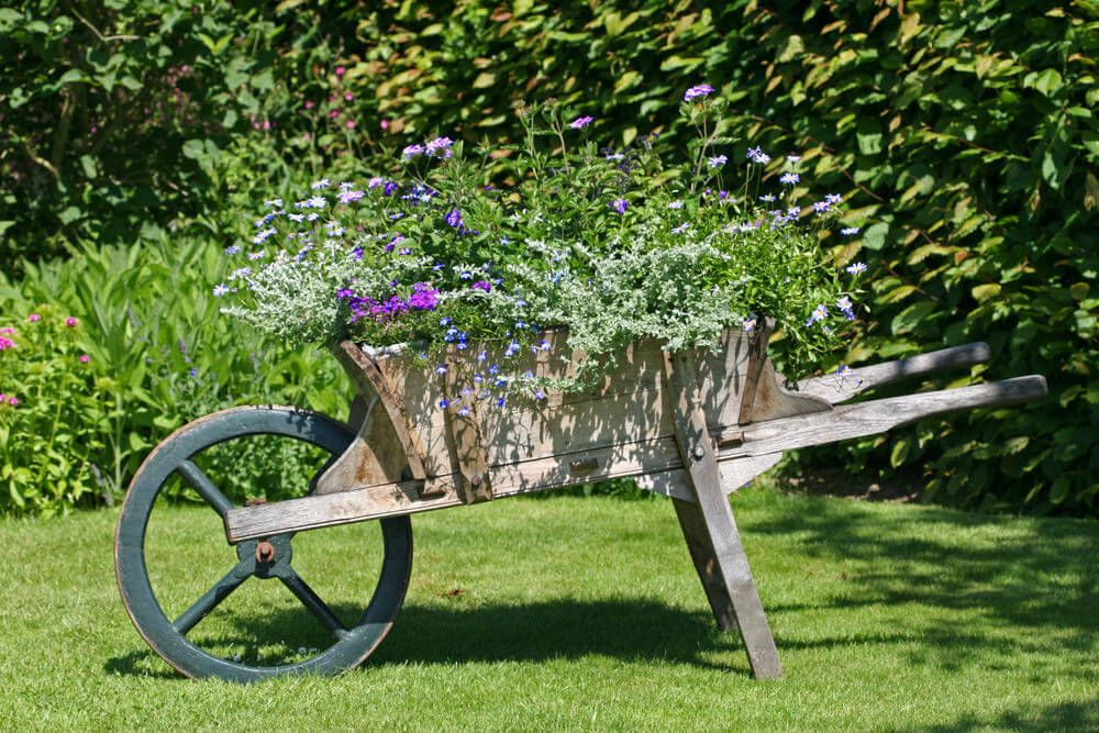 27 Wheelbarrow Flower Planter Ideas For Your Yard Wheel Barrows