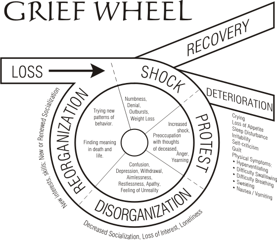 grace bible church of moorpark navigating the grief wheel all Sleep Cycle Graph grace bible church of moorpark navigating the grief wheel