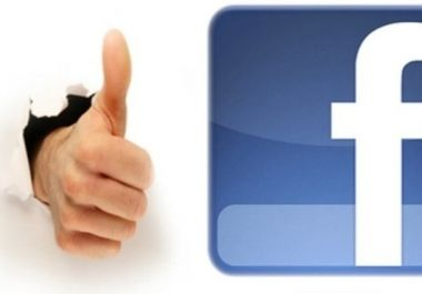 give you 1000+ VERIFIED Turkey likes for $1