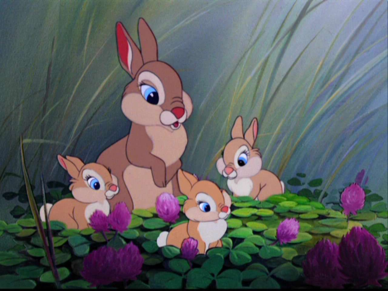 Bambi Friend Owl | Bambi - Bambi Image (5778321) - Fanpop