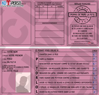 Creer Votre Permis De Conduire Humoristique Personnalise Permis De Conduire Conduire Carte D Identite