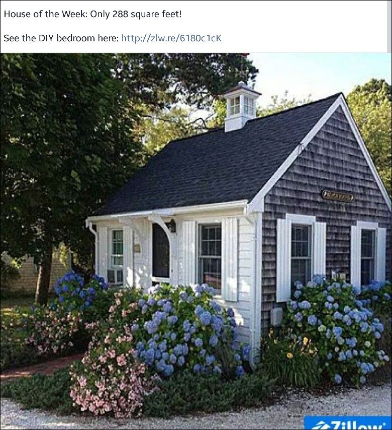 Small Guest Cottage: I Always Joked That I Was Going To Turn Our Pool She'd