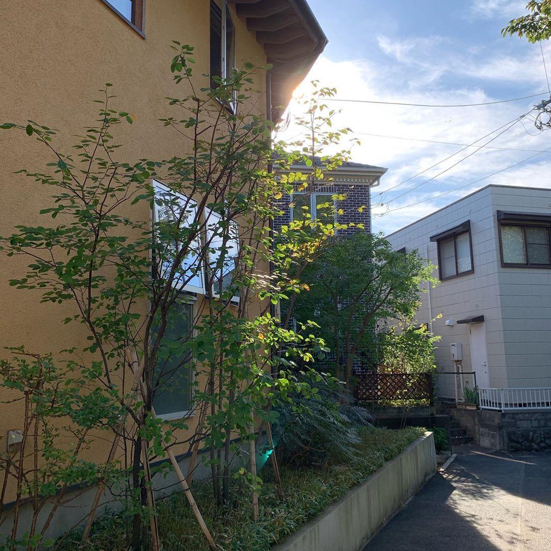 玄関 入り口 お庭 木造住宅 和風 雑貨 などのインテリア実例 2017