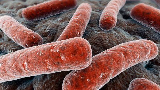 Crean un test que puede detectar la tuberculosis en 4 horas