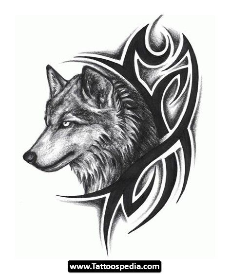 Mandala Wolf Tattoo Designs For Women I Like The: Here You Can Find Some New Design About Wolf Tattoo