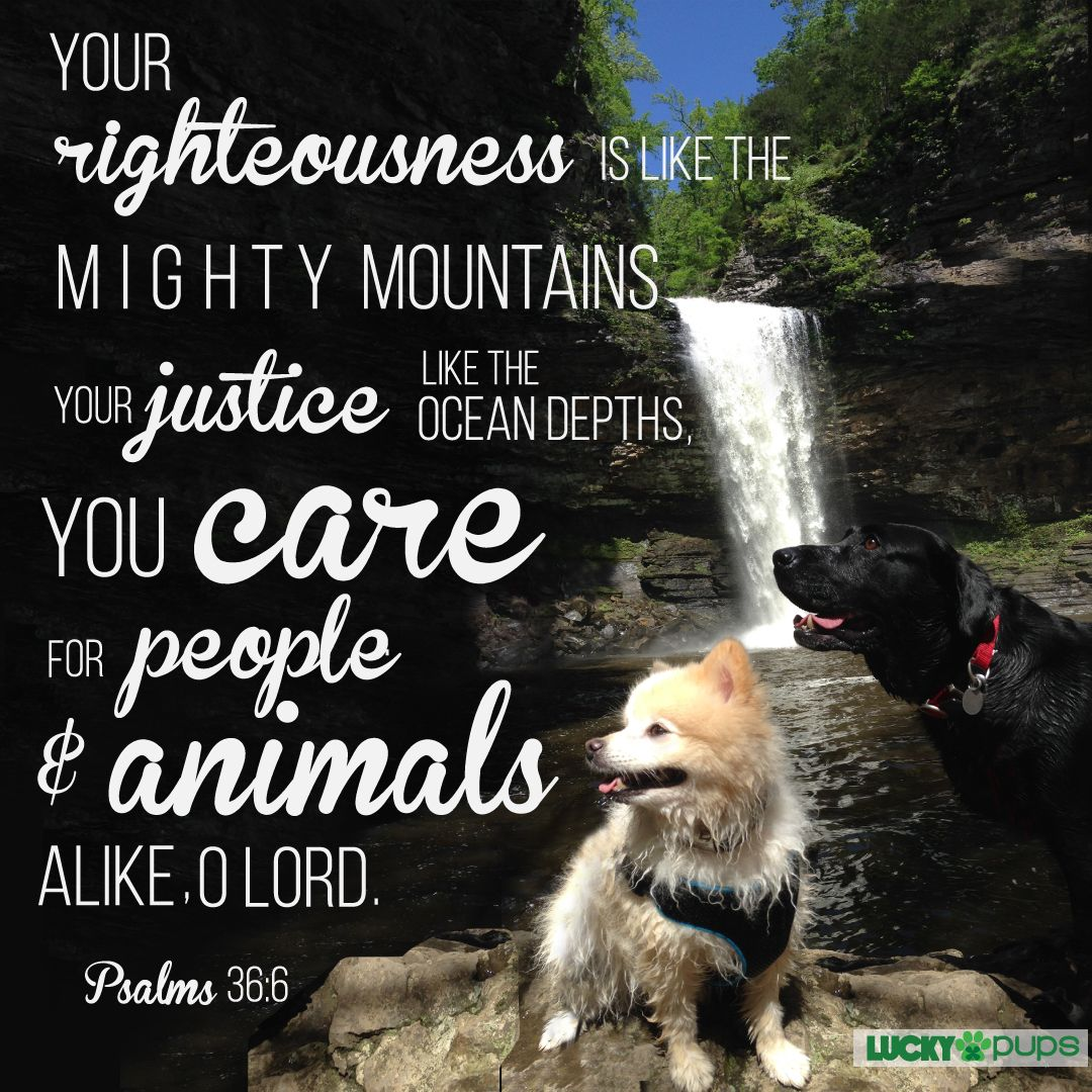 Your righteousness is like the mighty mountains, your