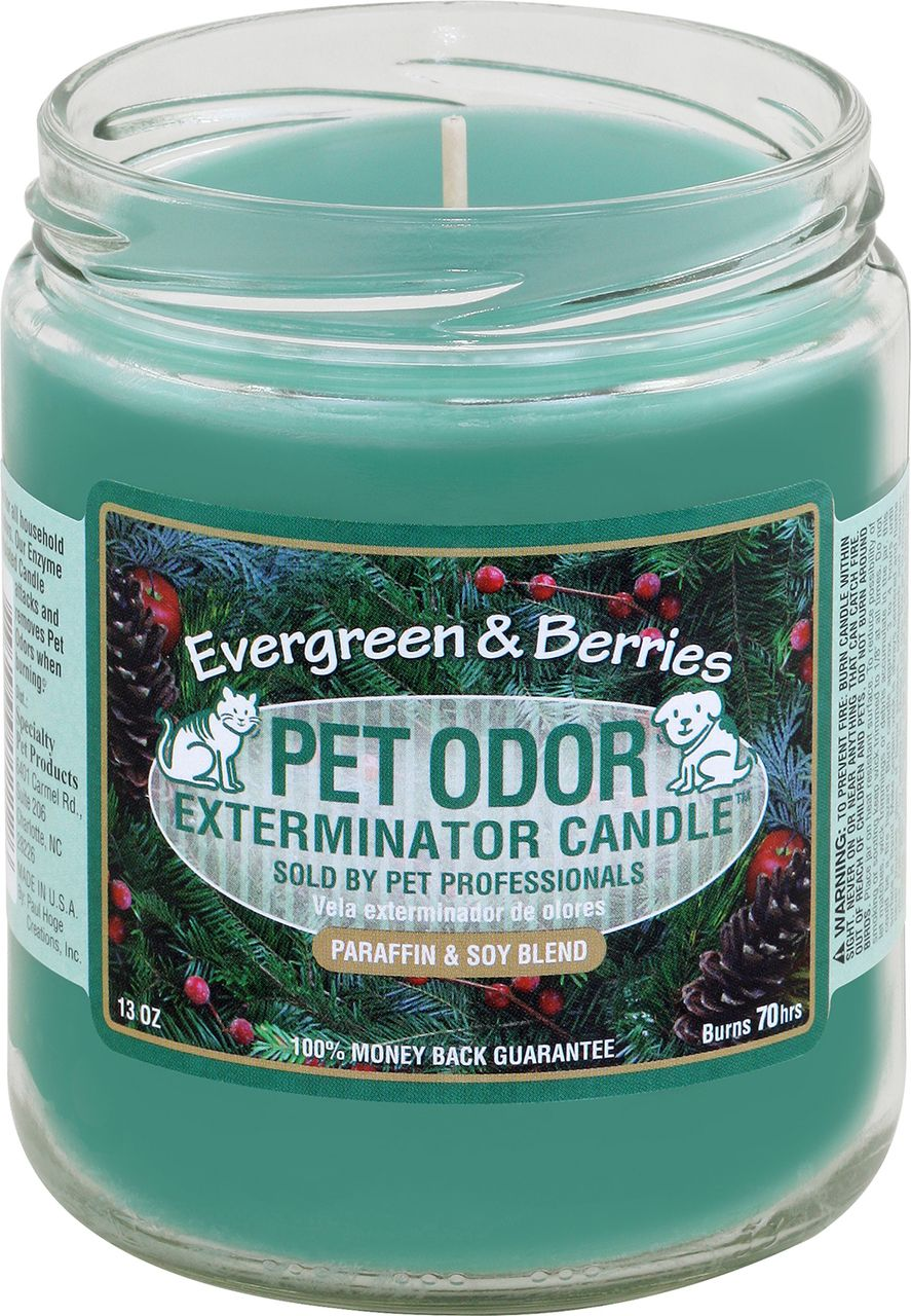 Pet Odor Exterminator Candle Evergreen & Berries Pet
