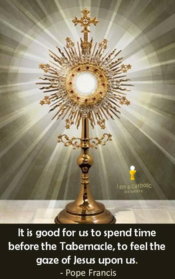 Pope Francis - The Holy Eucharist. … | PARISH RENEWAL ...
