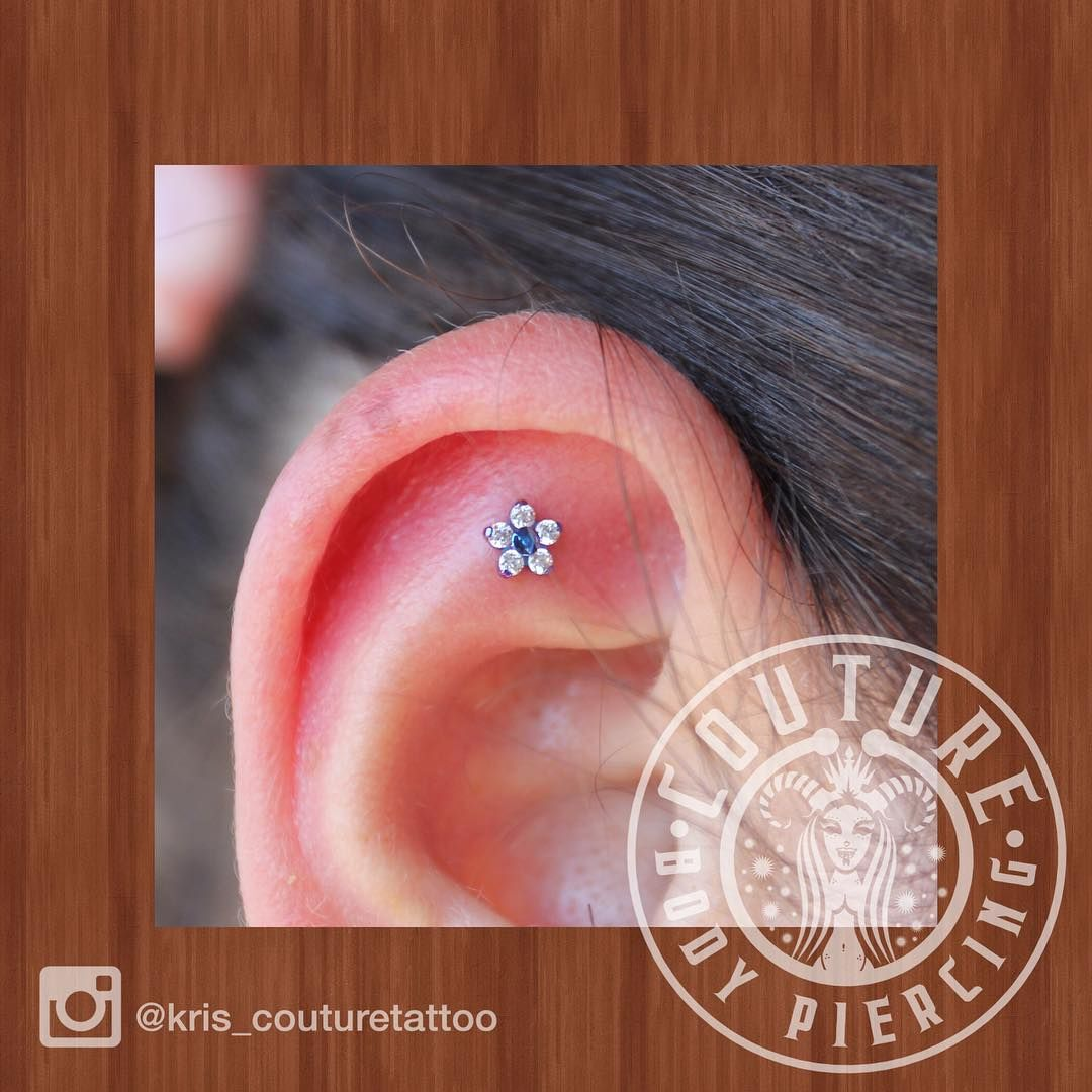 Another fresh scapha piercing with a #neometal flower. Anodized purple #couturetattoo #couturebodypiercing #cantonoh #neocult #neocultist #kcco