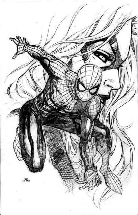Black Cat And Spider Man By Jim Cheung Black Cat Marvel Spiderman Black Cat Comic Books Art