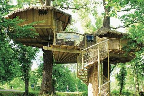 Tree fort of my dreams!