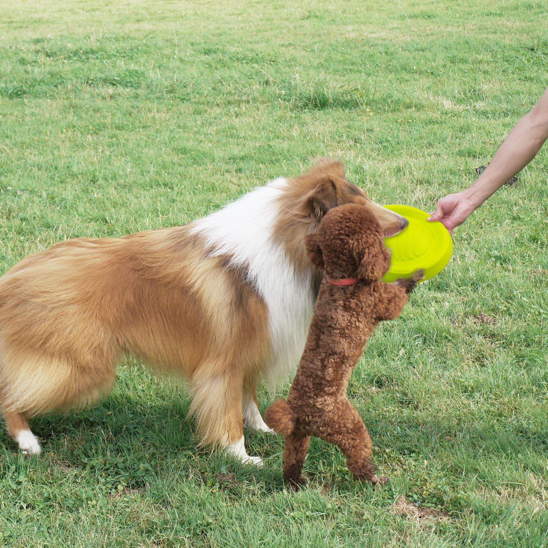 Laroo Dog Frisbee Indestructible Dog Flying Disc Dog Toys Frisbee