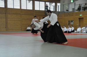 Aikido Lehrgang des österreichischen Aikidoverbands im Budokan Wels, Mai 2015 - Kokyonage