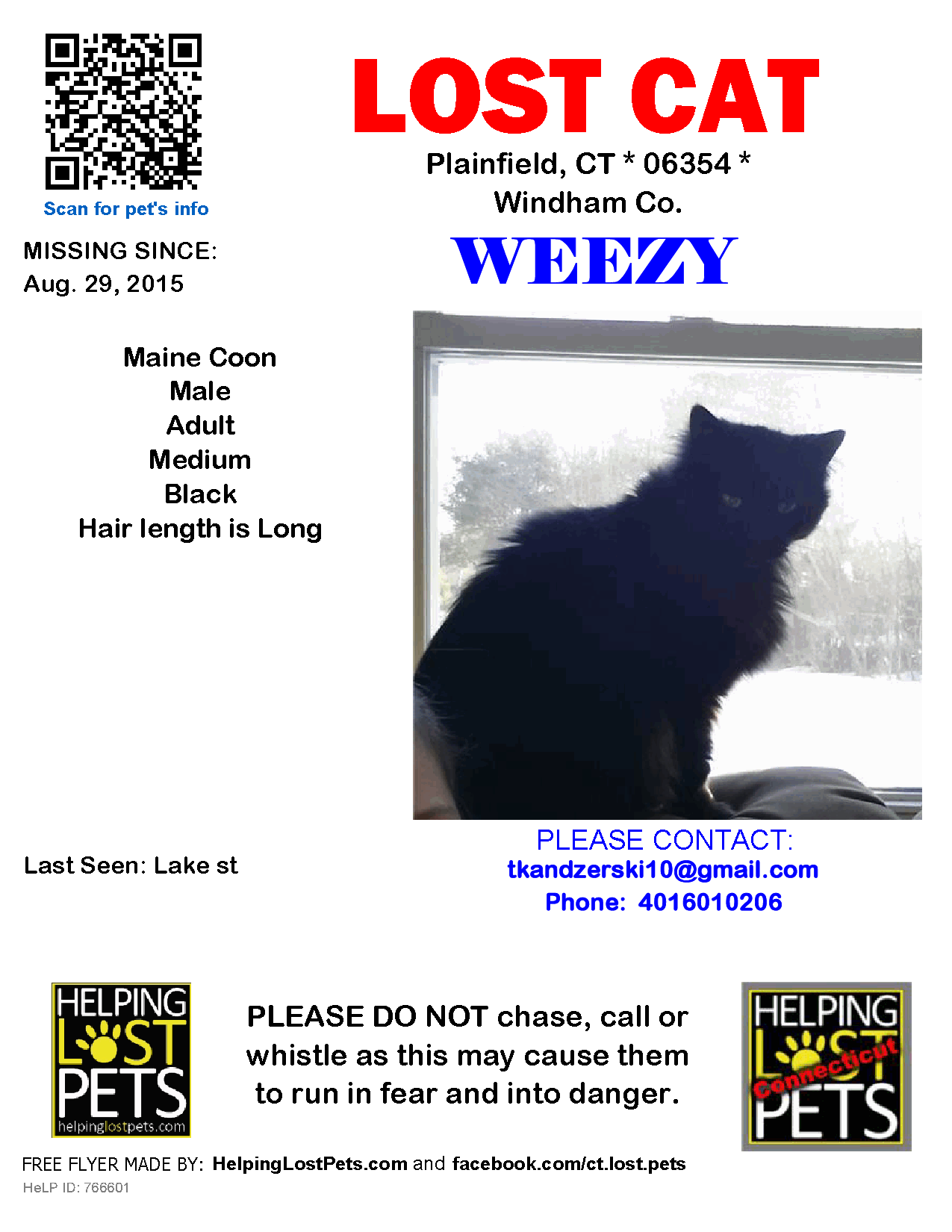 Pin On Lost Cats Ct