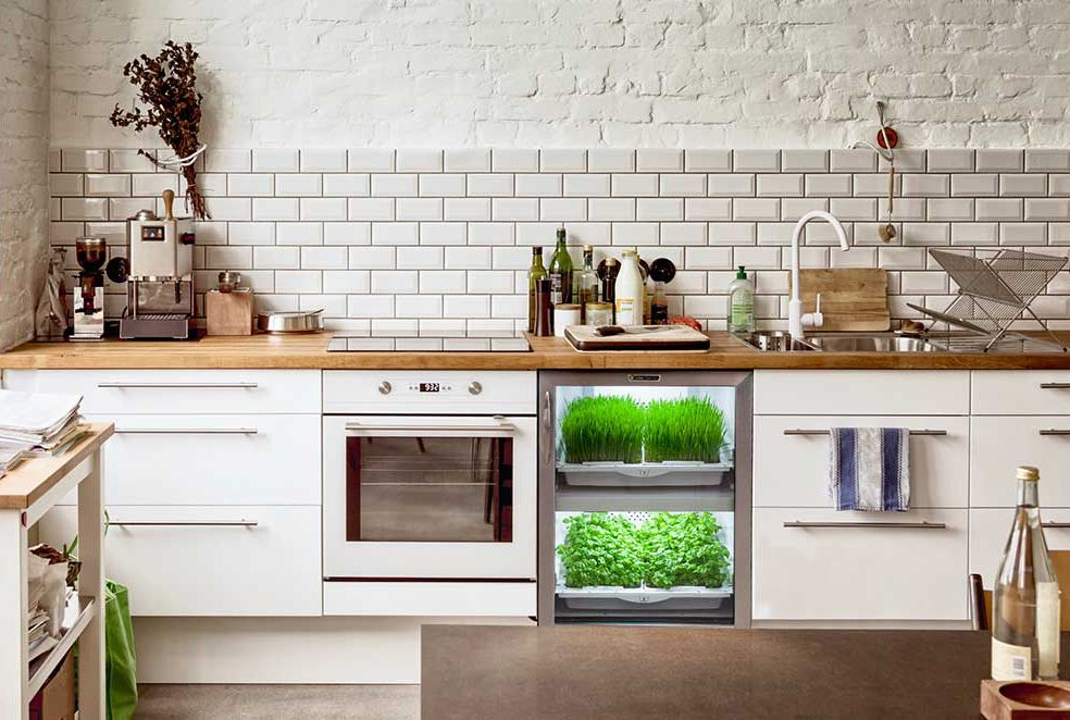 Don't have a green thumb? Let science and technology take