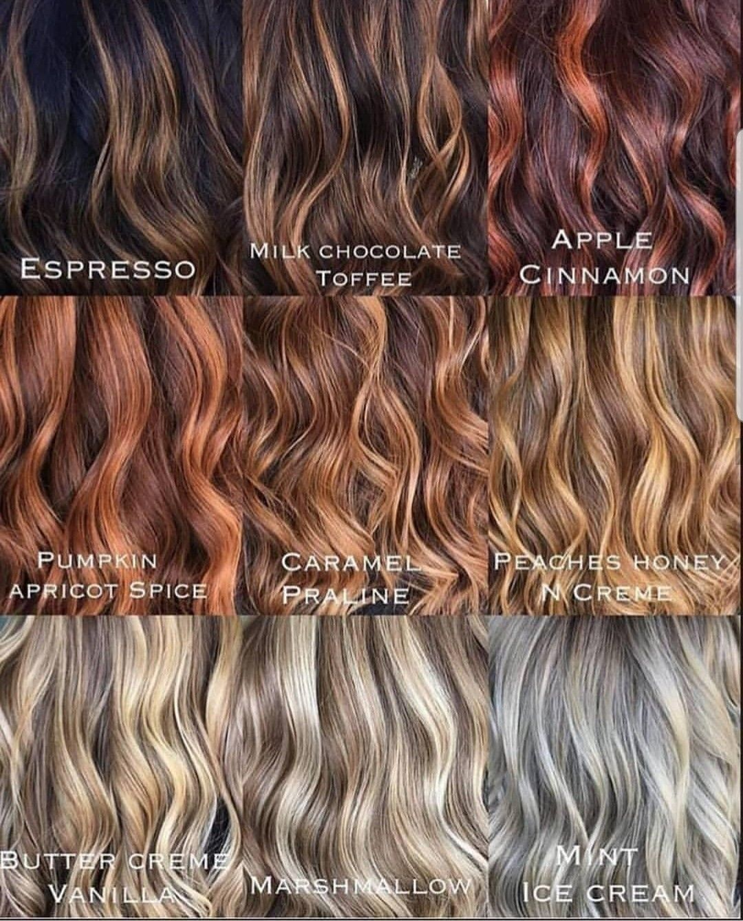 Hair Colour Haircolour Brunette Ginger Blonde Hair Color