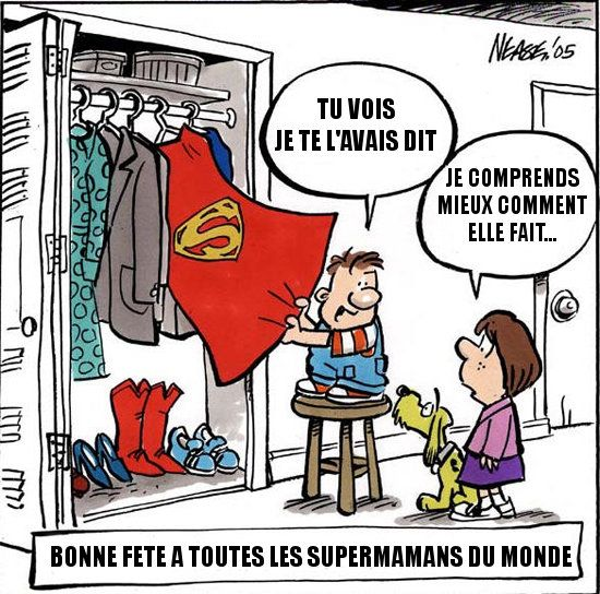Bonne Fete Maman Humour Funny Mothers Day Mothers Day