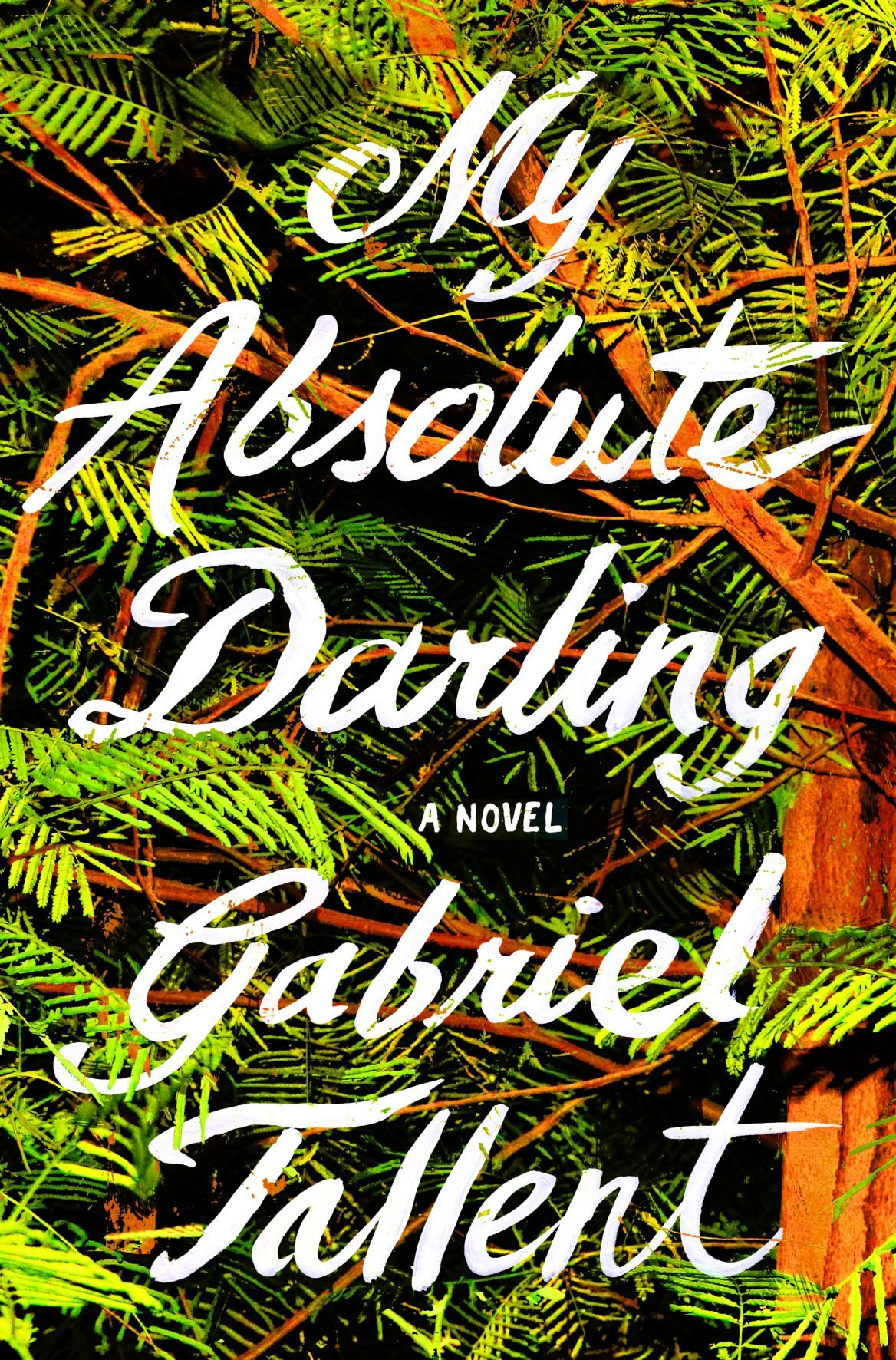 download pdf my absolute darling by gabriel tallent free download