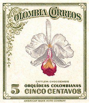 1947 Colombia Cattleya Chocoensisi Orchid Stamp Orchid Cattleya Chocoensisi Colombia Colombian Antique Postage Stamp Mail Botanic Retro Graphics Cattleya Stamp