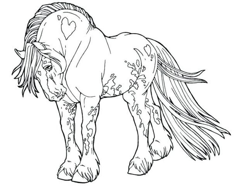 Horses Color Pages Printable In 2020 Horse Coloring Pages Horse Coloring Horse Coloring Books