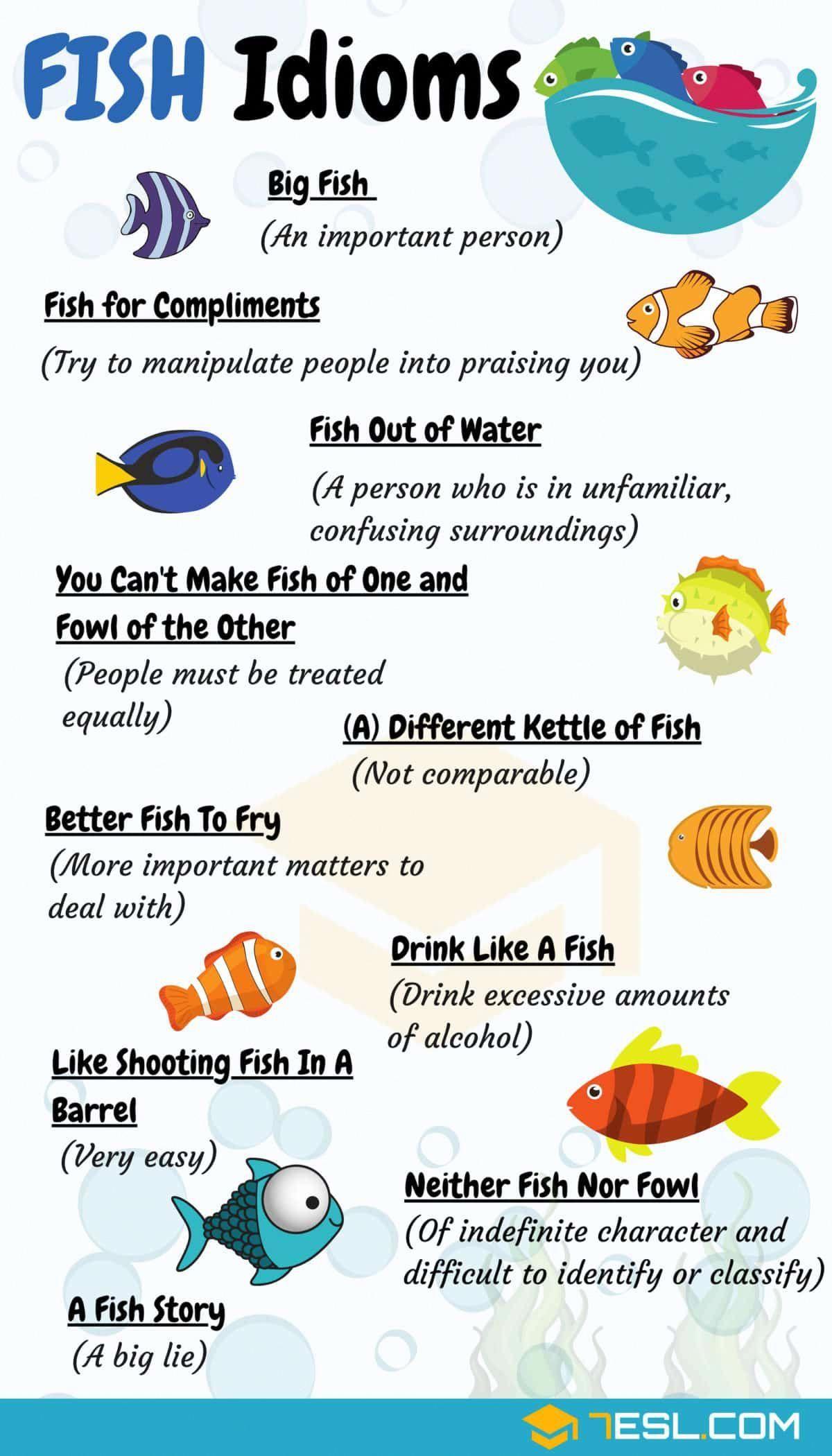 Fish Idioms Vocabulaireanglais