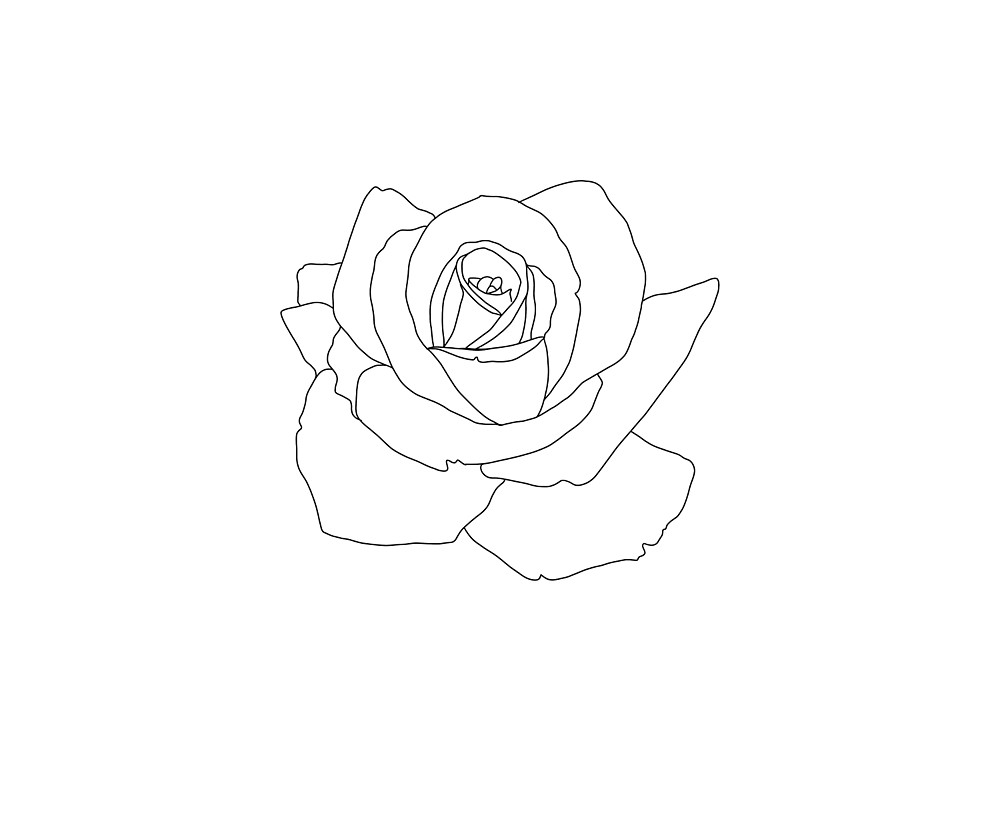 Simple Rose Tattoo Style Flower By Foxandcrow Redbubble Rose Drawing Tattoo Small Rose Tattoo Rose Tattoos On Wrist