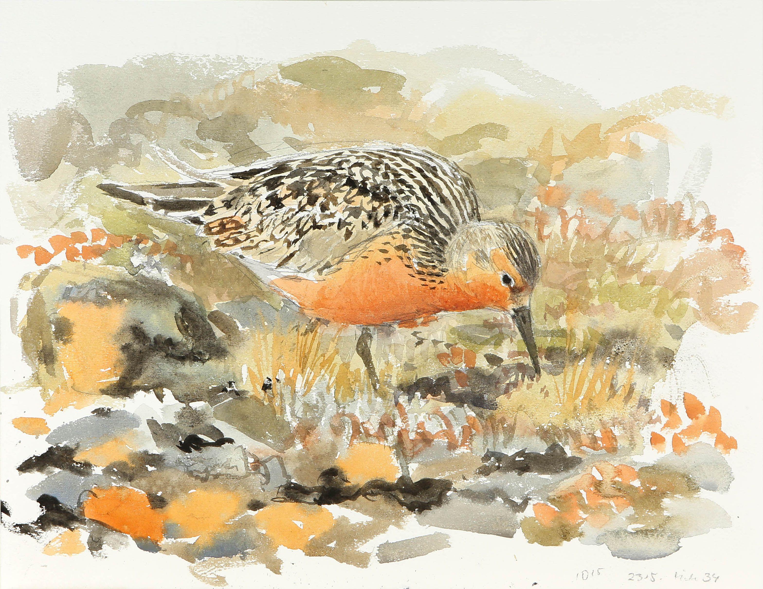 Original Watercolor Bird Painting Birds Flowers Bird Birds