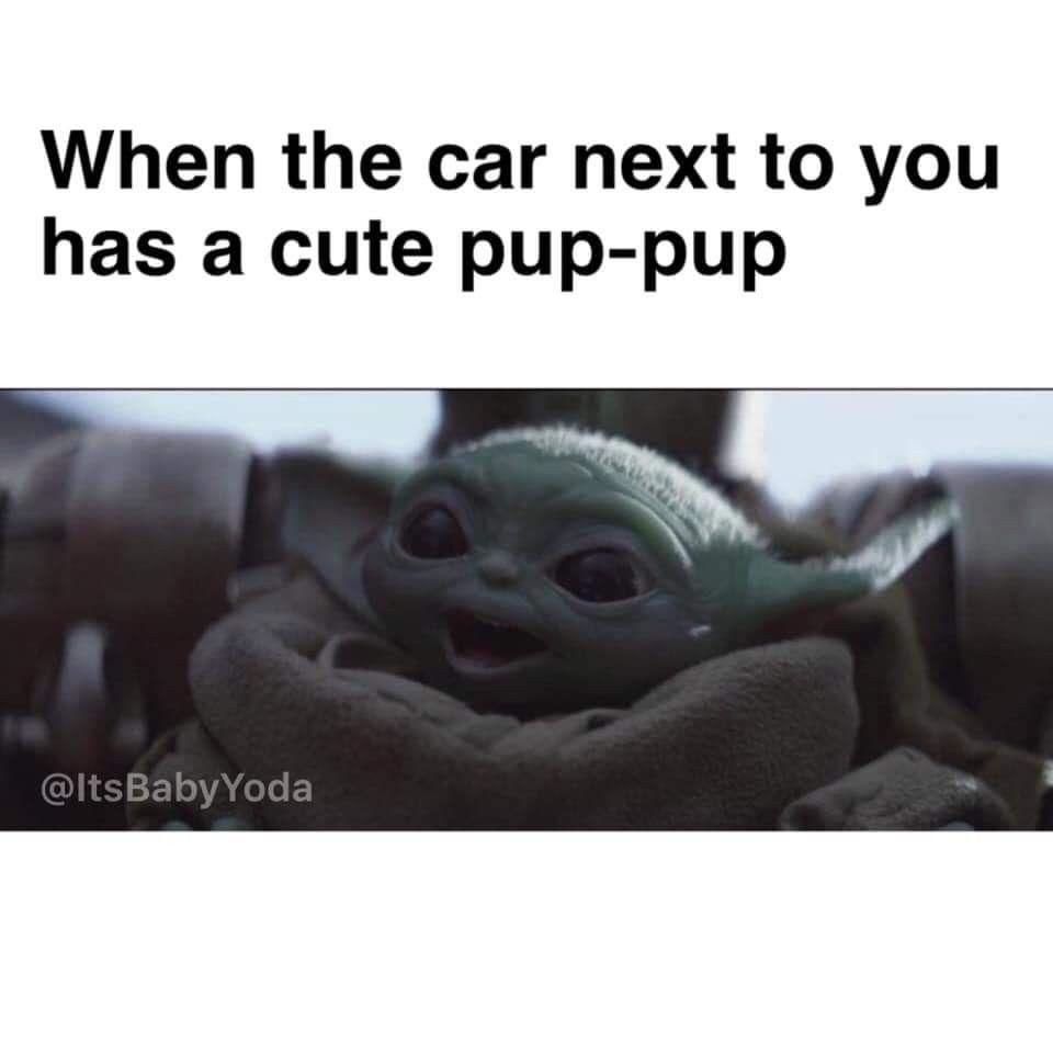 Pin By Ami On Mandalorian In 2020 Yoda Funny Yoda Meme Funny Star Wars Memes