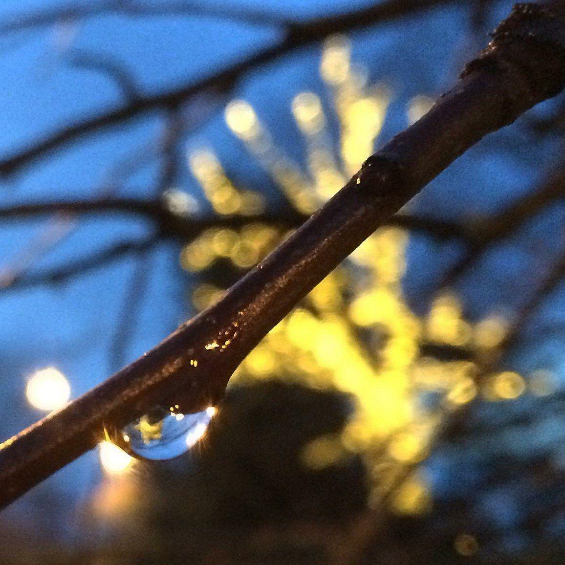 Rukous: Tee meistä valon kantajia — Valomerkki