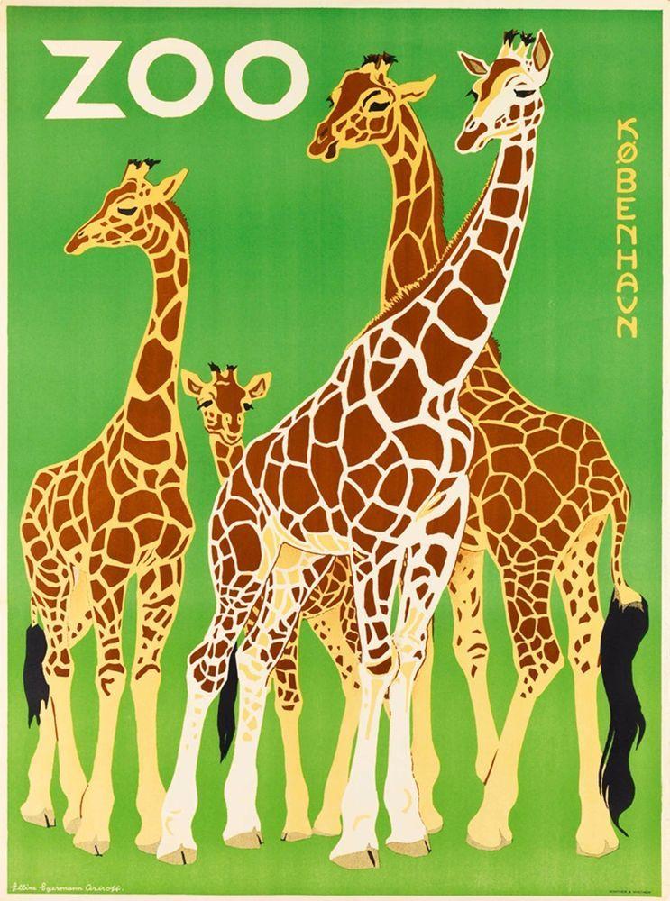 Vintage Copenhagen Zoo Toucan Poster A3//A4 Print