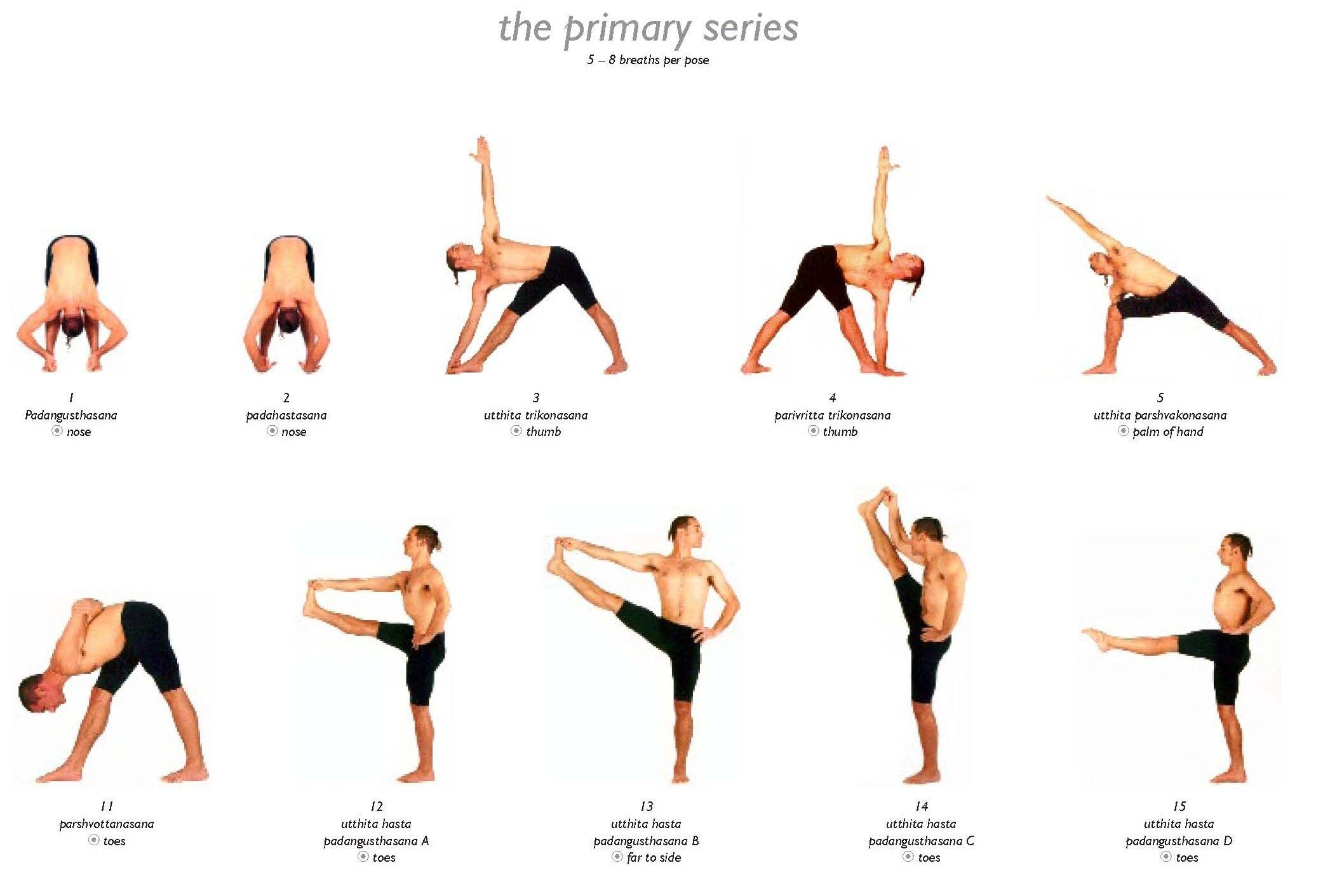 Sequence Of Yoga Asanas For Weight Loss Workout Krtsy