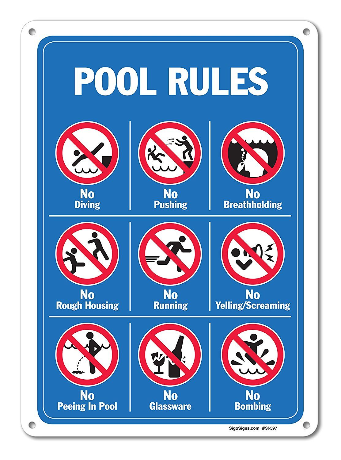 6c01e228996f0 Amazon.com: Pool Signs - Pool Rules Sign With Graphics- Large 10 X ...