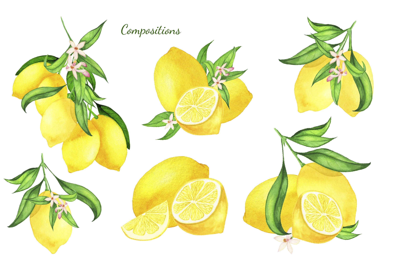 Watercolor Lemon Clipart, Lemon Frame, Lemon Wreath