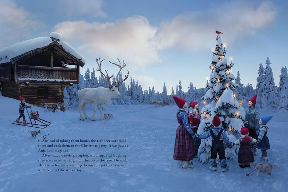 The Polar Bear Wish A Wish Book Lori Evert Per Breiehagen 9781524765668 Amazon Com Books Polar Bear Polar Nordic