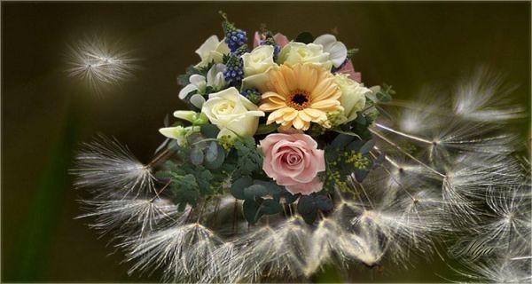 Bloemen de Mija por Carol * *