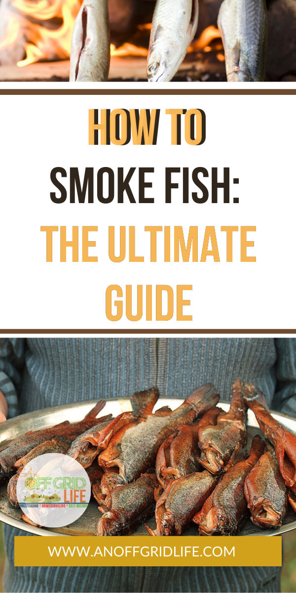 How To Smoke Fish The Ultimate Guide In 2020 Smoked Food Recipes Smoked Fish Smoked Fish Recipe