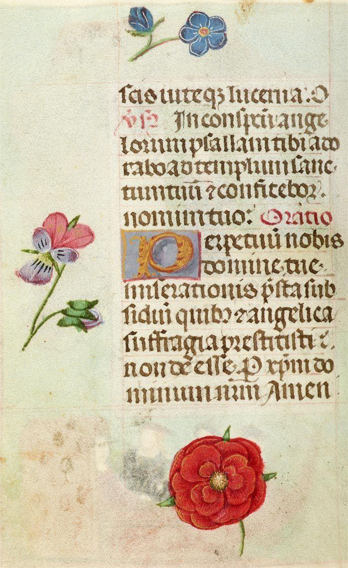 Book of Hours, in Latin | Belgium | ca. 1485 | The Morgan Library & Museum