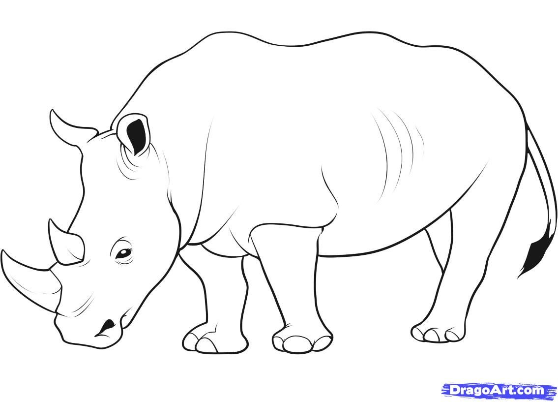 How To Draw A Animal Step By Step Black And White
