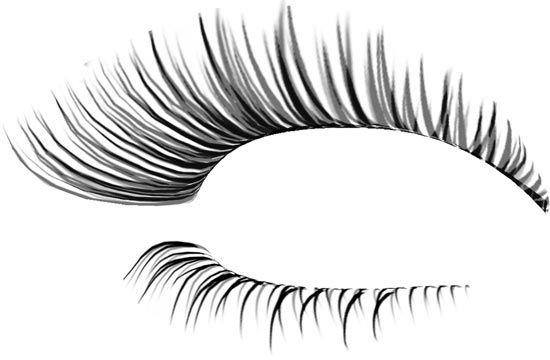 20+ Eyelashes Clipart Transparent Background