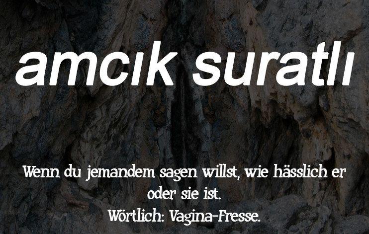 16 Turkische Schimpfworter Die Wir Dringend Im Deutschen Brauchen Turkisch Zitate Turkisch Turkische Spruche